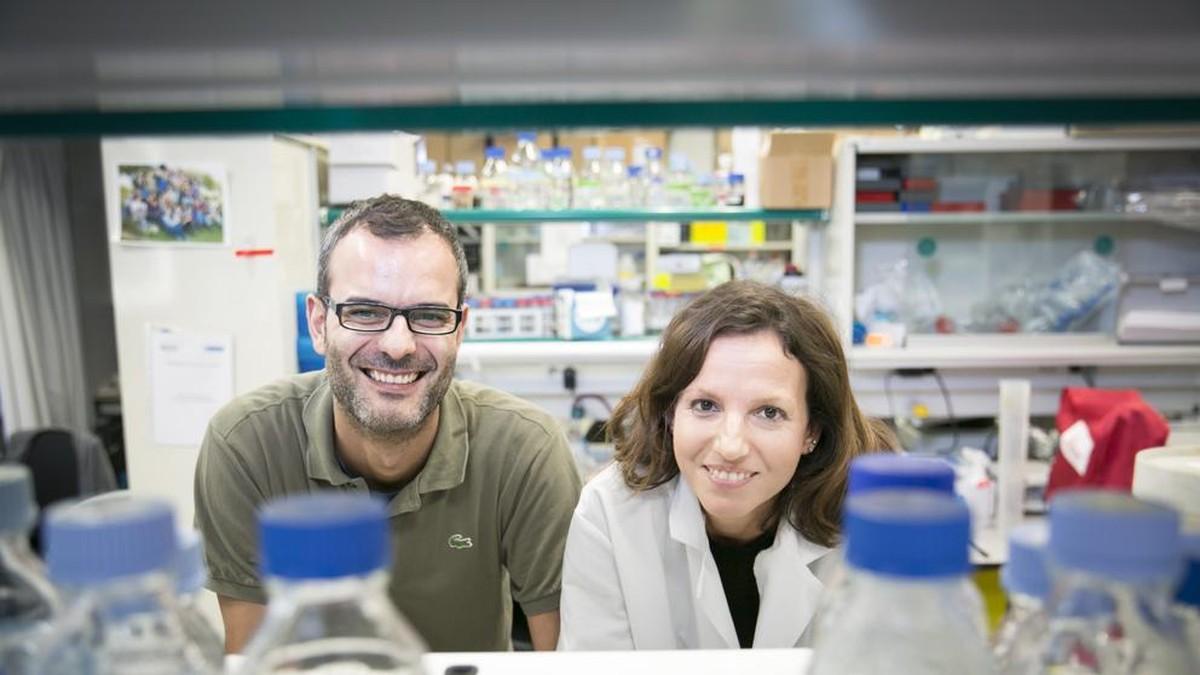 minbizien-metastasia-gantzen-metabolismoari-lotuta